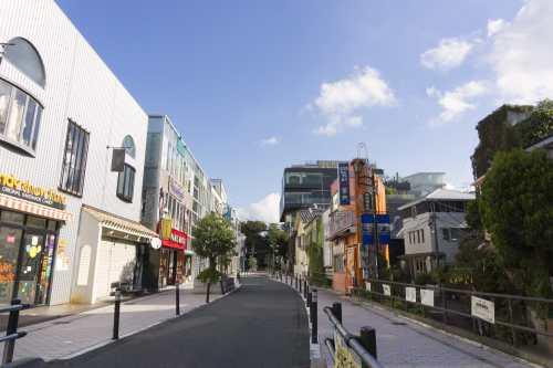 Cat Street-2-min