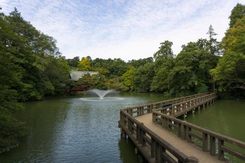 Ponte laghetto
