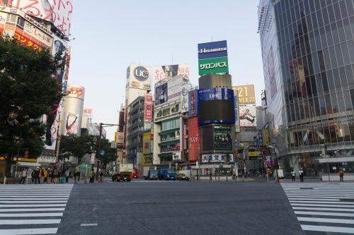 Shibuya crossing-1